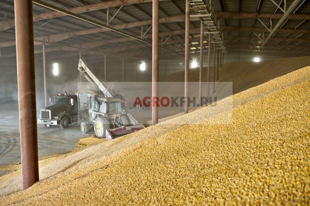 Хранение зерна в крытом токе