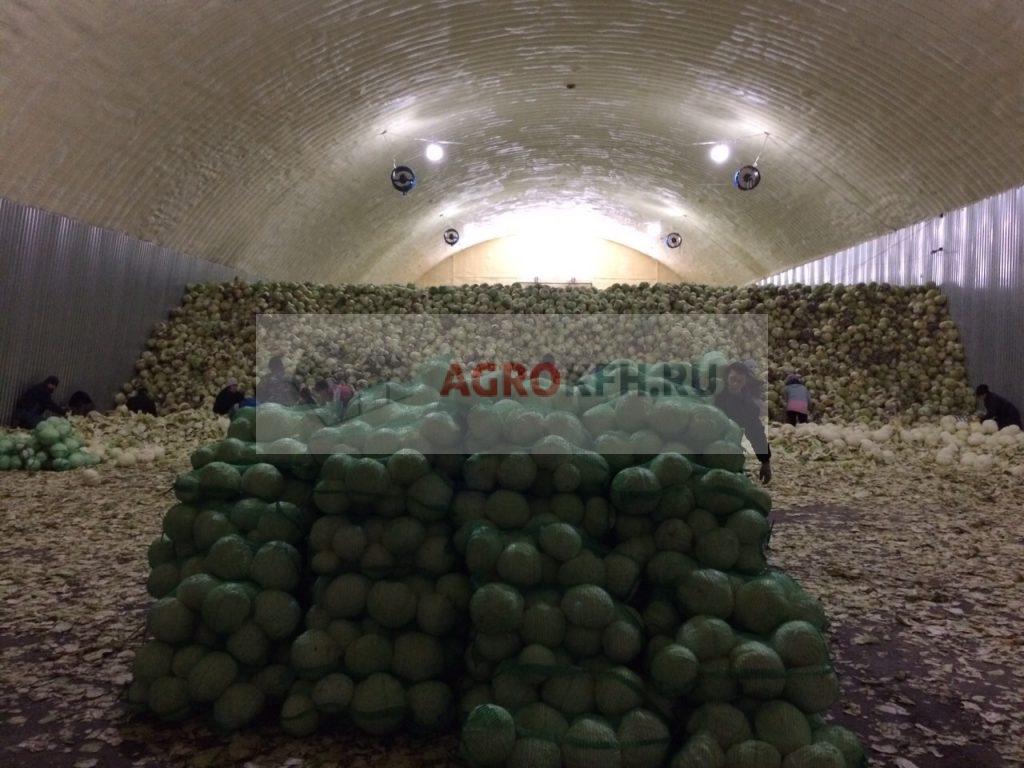 хранение скоропортящихся плодов и овощей на складе