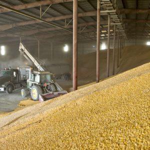 Расчет зернохранилища