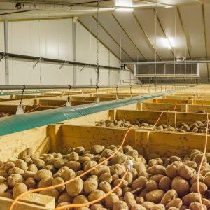 Проект картофелехранилища
