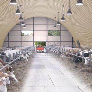 Ферма для КРС на 100 голов