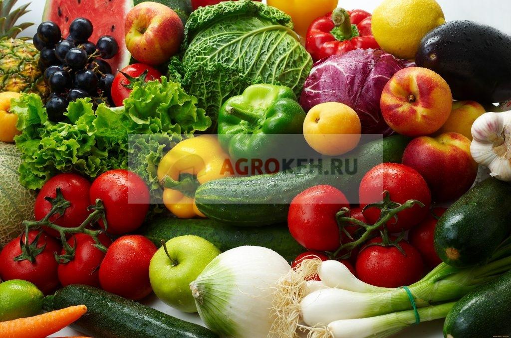 состав среды для хранения овощей и фруктов
