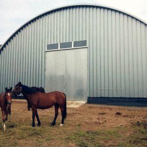 Строительство конных манежей