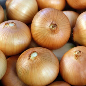 Хранение лука в овощехранилищах